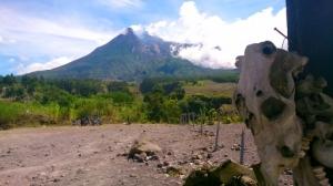 vulkan mini